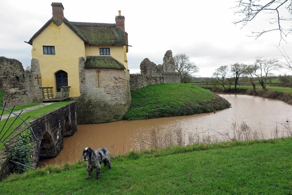 Stogursey Castle